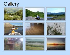 nextgen gallery  show